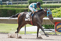 Another Romance with Luca Panici up cruises home to win The Azalea Stakes (G3) at Calder Race Course, Miami Gardens Florida. 07-07-2012.  Arron Haggart/Eclipse Sportswire.