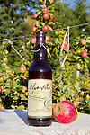 Alpenfire Organic Hard Cider, Calypso Semi Sweet, Blackberry cider, Alpenfire Orchard, Port Townsend, Jefferson County, Olympic Peninsula, Washington State, Certified organic cider, tasting room and orchard,