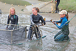 Katie, Stephanie & Kitty Putting Shovelnose Guitarfish Into Pen
