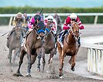 HALLANDALE BEACH, FL - JAN 27:Gun Runner #10 with Florent Geroux in the irons for trainer Steven M. Asmussen leads the field on the final turn of the $16,000,000 Pegasus World Cup Invitational Stakes (G1) at Gulfstream Park on January 27, 2018 in Hallandale Beach, Florida. (Photo by Bob Aaron/Eclipse Sportswire/Getty Images)
