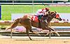 Gold Beach winning at Delaware Park on 7/26/17