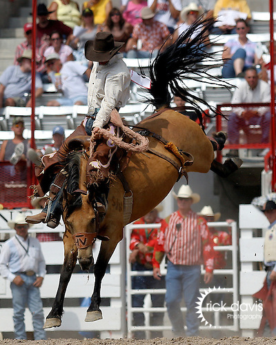 PRCA cowboy Will Berg scores a 76 point saddle bronc ride on the Harry Vold Rodeo Company bronc Crystal at the 111th Cheyenne Frontier Days rodeo on July 22, 2007 in Cheyenne, Wyoming.