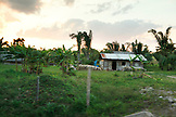 BELIZE, Punta Gorda, Toledo, a small roadside farm near the Li Punit Ruins