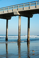 Scripp's pier, La Jolla, California