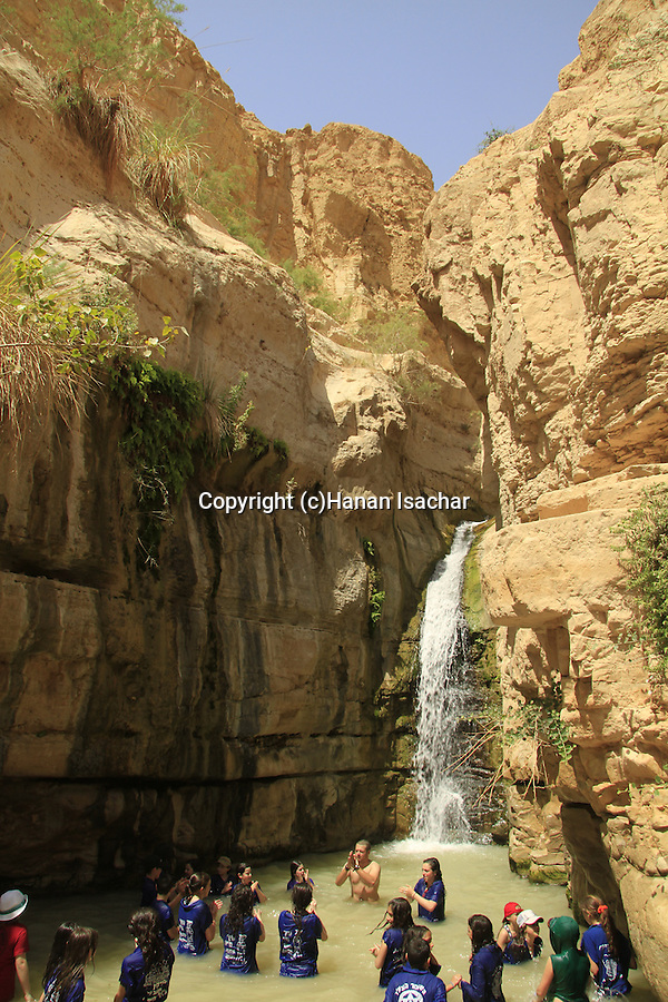 Israel, Judean desert, the waterfall in Nahal Arugot