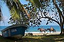 Children riding horses on a beach in Costa Rica