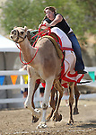 Teri Vance competes in the International Camel Races in Virginia City, Nev., on Friday, Sept. 9, 2011. .Photo by Cathleen Allison