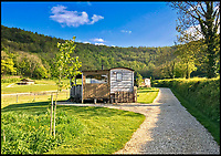 Home on the Range? - Stunning Dorset Ranch business for sale.