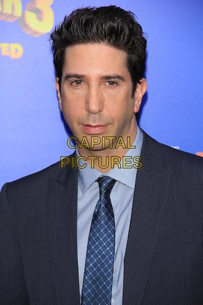 "David Schwimmer.The New York Premiere of ""Madagascar 3: Europe's Most Wanted"" held at Ziegfeld Theater, New York, NY, USA..June 7th, 2012.headshot portrait black suit blue tie.CAP/LNC/TOM.©LNC/Capital Pictures."