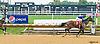 Super Ducker winning at Delaware Park on 9/28/16
