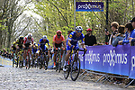 Zdenek Stybar (CZE) Deceuninck-Quick Step and Greg Van Avermaet (BEL) CCC Team on the the first ascent of the Kemmelberg during the 2019 Gent-Wevelgem in Flanders Fields running 252km from Deinze to Wevelgem, Belgium. 31st March 2019.<br /> Picture: Eoin Clarke | Cyclefile<br /> <br /> All photos usage must carry mandatory copyright credit (© Cyclefile | Eoin Clarke)