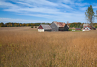 Sleeping Bear Dunes National Lakeshore, Michigan<br /> Two barns on the open meadows of the Thoreson farm in the Port Oneida Rural Historic District