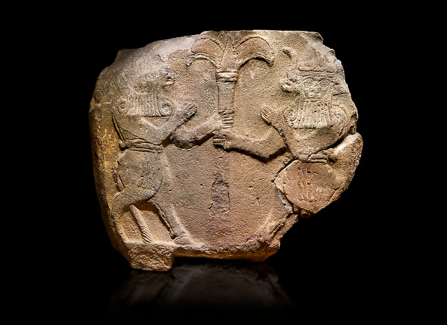 Hittite monumental relief sculpted orthostat stone panel from Water Gate Basalt, Karkamıs, (Kargamıs), Carchemish (Karkemish), 900-700 B.C.  Anatolian Civilisations Museum, Ankara, Turkey.<br /> <br /> Two bull-men holding the trunk of the tree in the middle. The faces of the figures, having tufts in both temples over the chain, have been depicted from the front direction. The horned figures with bull-like ears and legs have human bodies. <br /> <br /> On a black background.
