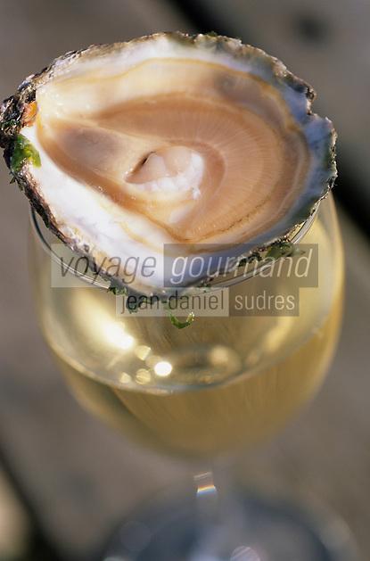 Europe/France/Bretagne/29/Finistère/Lannilis/Prat Ar Coum: Huitres plates de Prat Ar Coum et verre de vin blanc chez Yvon Madec (ostréïculteur)
