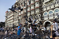 People feed pigeons in front of the Taj hotel that faces the Arabian sea on the Marine Drive in Mumbai, India. Photo by Suzanne Lee