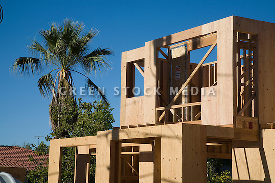 A California Palm rises into a blue sky next to a two-story wood frame house under construction in Cupertino, California, in Silicon Valley.