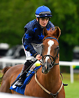 Gold Venture ridden by Hollie Doyle goes down to the star of The First Carlton Novice Auction Stakes Div 1 during Evening Racing at Salisbury Racecourse on 11th June 2019