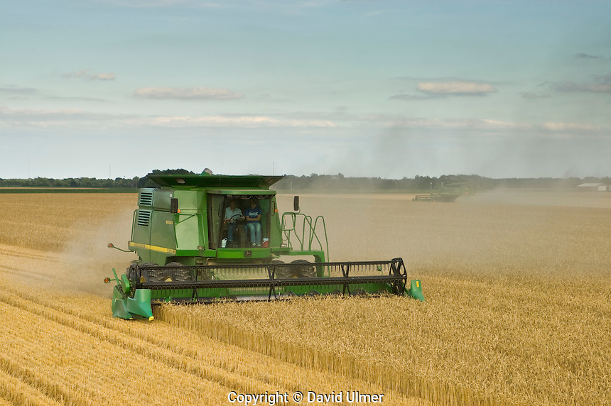 Wheat harvest in Bond County