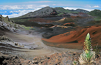 Scenic overlook of the crater with a sliversword plant of the HALEAKALA NATIONAL PARK on Maui