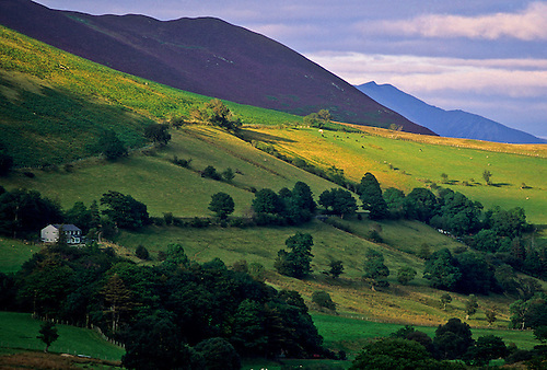 The lush green landscape of Northern England