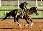 October 29, 2019 : Breeders' Cup Distaff entrant Elate, trained by William I. Mott,  exercises in preparation for the Breeders' Cup World Championships at Santa Anita Park in Arcadia, California on October 29, 2019. Scott Serio/Eclipse Sportswire/Breeders' Cup/CSM