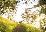 NEW ZEALAND, Auckland, Woman Hiking on Mount Eden, Ben M Thomas