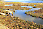Landscape at high tide River Ore, Hollesley Bay, near Shingle Street, Suffolk, England, UK