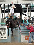 Heith DeMoss competes in the saddle bronc event at the Reno Rodeo, in Reno, Nev. on Friday night, June 22, 2012..Photo by Cathleen Allison
