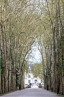 France, Indre-et-Loire (37), Chenonceaux, château et jardins de Chenonceau,