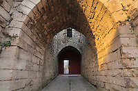 Looking through the archway of the Porte Saint Jean, or St John's Gate, built 1286-1306, at the medieval castle of Chateau-Thierry, Picardy, France. The first fortifications on this spur over the river Marne date from the 4th century and the first castle was built in the 9th century Merovingian period by the counts of Vermandois. Thibaud II enlarged the castle in the 12th century and built the Tour Thibaud, and Thibaud IV expanded it significantly in the 13th century to include 17 defensive towers in the walls and an East and South gate. The castle was largely destroyed in the French Revolution after having been a royal palace since 1285. In 1814 it was used as a citadel for Napoleonic troops. Picture by Manuel Cohen
