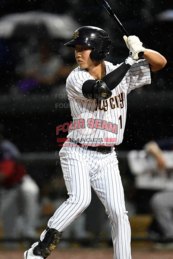 Hoy Park (1) of the Charleston RiverDogs on the South team bats at the South Atlantic League All-Star Game on Tuesday, June 20, 2017, at Spirit Communications Park in Columbia, South Carolina. The game was suspended due to rain after seven innings tied, 3-3. (Tom Priddy/Four Seam Images)