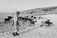 - Villaggio albanese, Queparo (Cepar&ograve;, agosto 1993); pastore sulla spiaggia.<br /> <br /> -  Albanian  Village, Queparo (Cepar&ograve;, August 1993); shepherd on the beach