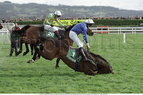 SEQUENCE 3 - RUBY WALSH falls from Adamant Approach, Supreme Novice Hurdle, Cheltenham Festival, Tuesday, 020312. Photo: Neil Tingle/Action Plus...2002.Injury injured.hurt hurting.damage damages damaged.accident accidents fall.three