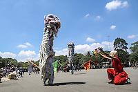 SAO PAULO, SP, 26.01.2014 - PRE ANO NOVO CHINES / IBIRAPUERA - Pré-apresentação das danças do Dragão e do Leão como parte das comemorações do Ano Novo Chinês. Este 2014 é o ano do cavalo no horóscopo chinês, no Parque do Ibirapuera na regiao sul da cidade de Sao Paulo, neste domingo 26. (Foto: William Volcov / Brazil Photo Press).