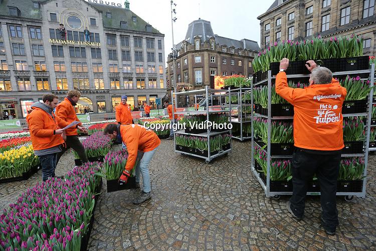 Foto: VidiPhoto<br /> <br /> AMSTERDAM - Duizenden toeristen en dagjesmensen, meer dan voorgaande jaren, hadden er zaterdag urenlang wachten voor over om een gratis bosje tulpen te bemachtigen. Op de Dam in Amsterdam werd zaterdag voor het vijf jaar op rij de Nationale Tulpendag gehouden. De unieke pluktuin met ruim 200.000 tulpen werd vanaf 13.00 uur opengesteld voor het publiek, terwijl kwekers en vrijwilligers al vanaf 7.00 uur bezig waren om de tulpen op de juiste plek te zetten. Dit jaar was er bijzondere aandacht voor Europa. Minister Bert Koenders van Buitenlandse Zaken, locoburgemeester van Amsterdam Kajsa Ollengren, doopten samen met voorzitter Arjan Smit van de Nederlandse Tulpenkwekers de nieuwe paarse tulp Spinoza. De tulp is tot eind april de populairste voorjaarsbloem van ons land. Via de Nederlandse bloemenveilingen worden naar verwachting dit jaar zo'n 2 miljard tulpen verhandeld. Toeristen maakten zaterdag van de gelegenheid gebruik om niet alleen een bosje tulpen mee naar huis te nemen, maar ook om uitgebreid foto's te maken in de enorme pluktuin.