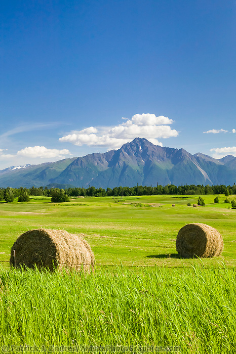 Hay bales, Agriculture in the Matanuska Susitna valley town of Palmer, Alaska