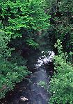 Napa River