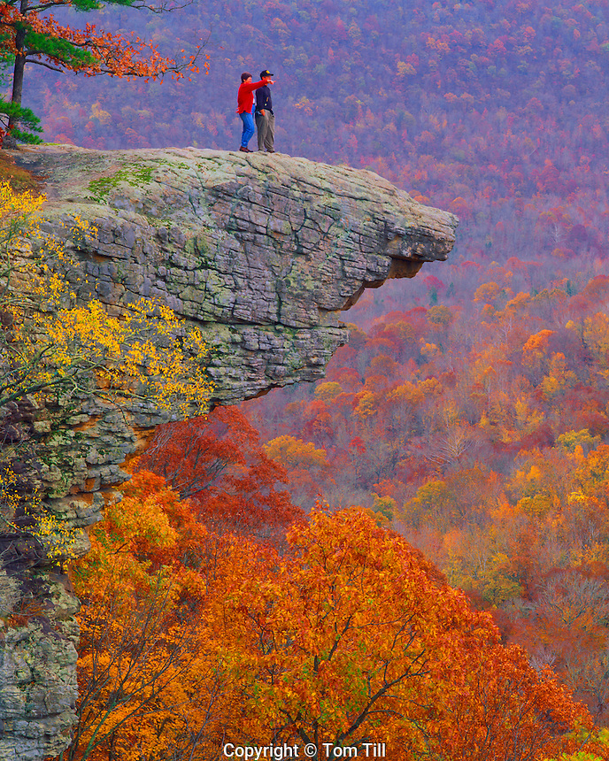 Autumn Colors at Hawksbill Crag, Upper Buffalo Wilderness, Ozark National Forest, Arkansas