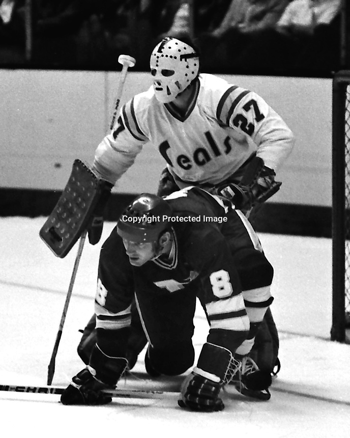 California Golden Seals goalie Gilles Meloche and Minnesota North Stars right Wing Bill Goldsworthy,<br />