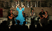 Flamenco dancing at the Gravity lounge Photo/Andrew Shurtleff dance music art