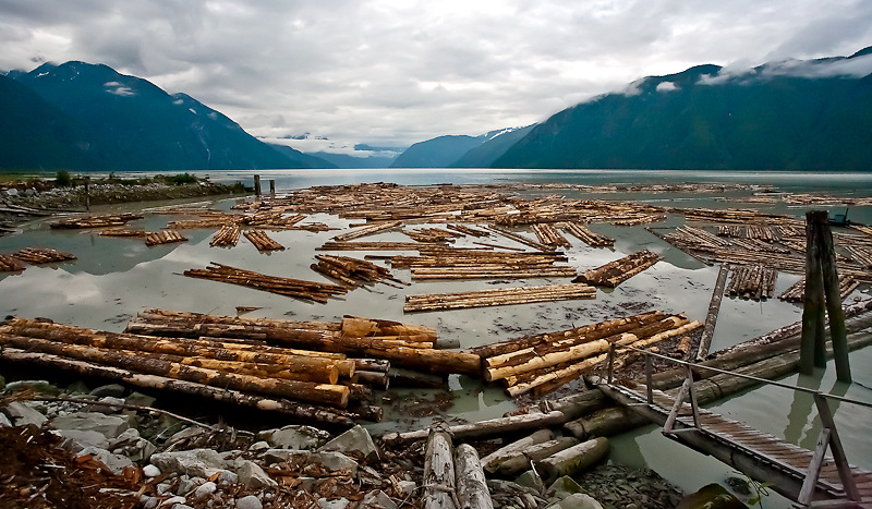 The booming ground at the head of Knight Inlet, approximately 125km into the coast mountain range. Much of the wood bundled and boomed here is destined for mainland China which has fuelled demand for low-value second growth Douglas Fir and Western Hemlock that has regenerated after the Kleena Kleene valley was logged in the mid-20th century.