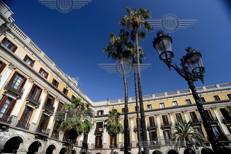 Palm trees in Placa Reial. /Felix Features