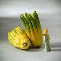 Gastronomie / Diététique /  Main de Bouddha et  Petit Prince  //  Gastronomy / Dietetics / Hand of Buddha and Little Prince