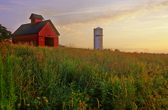 Grasses Grow in Profusion in the Restored Prairie at Geneva Park District's Peck Farm Park in Kane County, Illinois, as the sun sets behind the Grainary and revamped Silo Observation Tower.