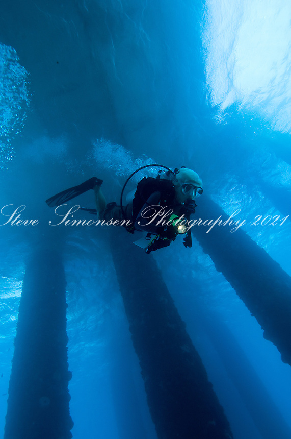 Diving the Fredericksted pier.Fredericksted, St. Croix.U.S. Virgin Islands