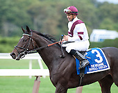 Beldame - Royal Delta