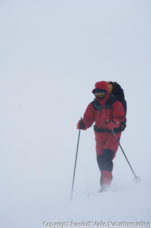Person går på ski i sterk vind og snødrev ---- Skier in strong wind and snow
