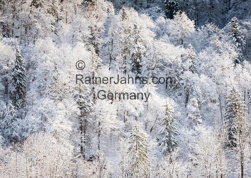 Deutschland, Bayern, Chiemgau, Bergsteigerdorf Schleching: Winterszene | Germany, Upper Bavaria, Chiemgau, mountaineer village Schleching: winter scene