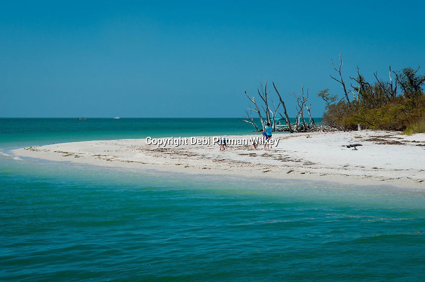 Cayo Costa, Fort Myers, Florida, USA