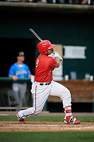 Harrisburg Senators designated hitter Raudy Read (8) follows through on a swing during a game against the Akron RubberDucks on August 18, 2018 at FNB Field in Harrisburg, Pennsylvania.  Akron defeated Harrisburg 5-1.  (Mike Janes/Four Seam Images)